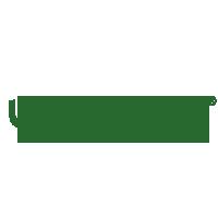 Ugly Deck Logo